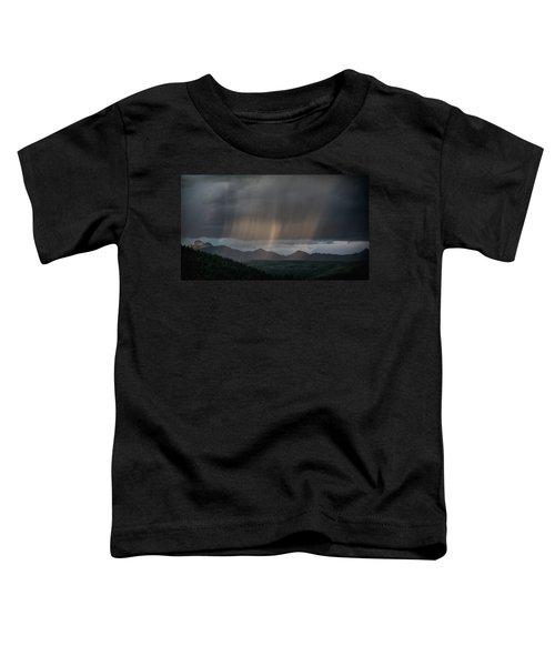Enlightened Shafts Toddler T-Shirt