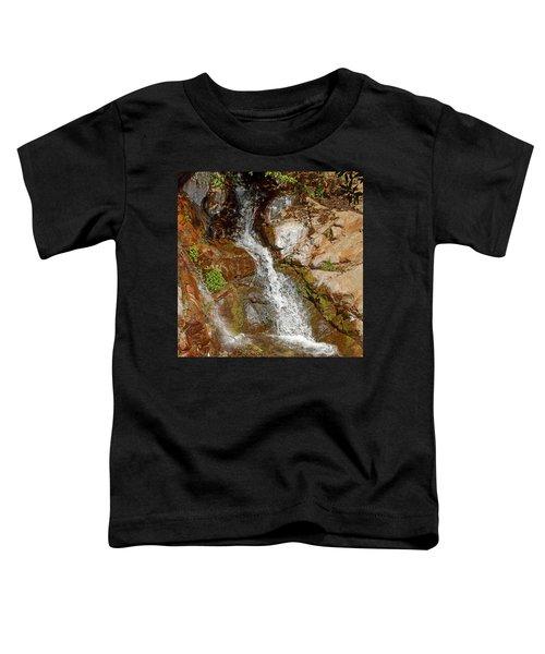 Etiwanda Waterfalls Toddler T-Shirt
