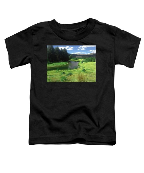 Faafall121rmnp Toddler T-Shirt