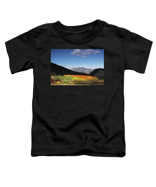 Faafallscene116 Toddler T-Shirt