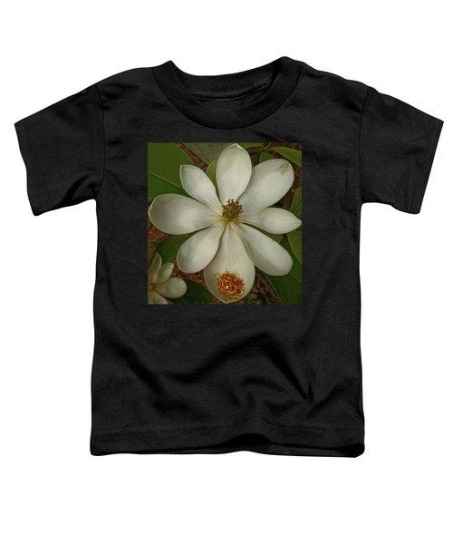 Fading Glory Toddler T-Shirt