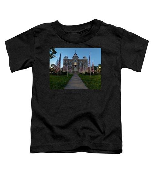 Fairbury Nebraska Avenue Of Flags - September 11 2016 Toddler T-Shirt