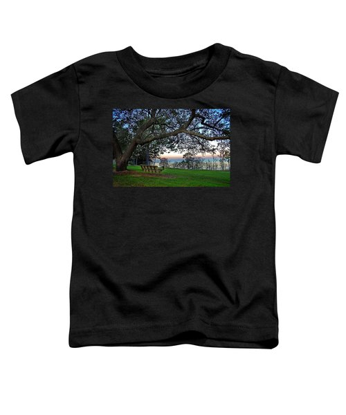 Fairhope Swing On The Bay Toddler T-Shirt