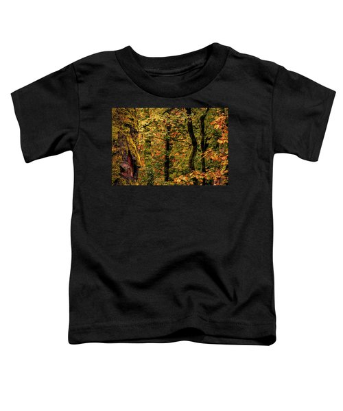 Fall Is Coming Toddler T-Shirt