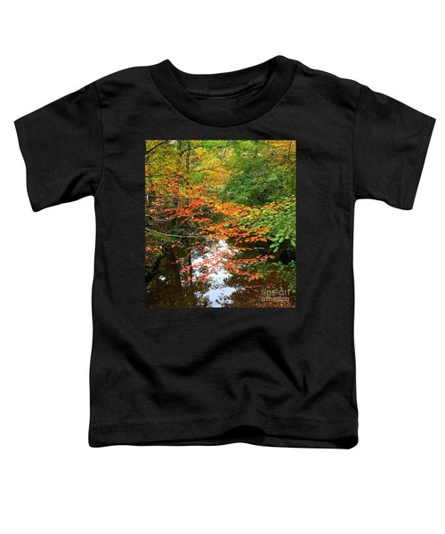 Fall Is In The Air Toddler T-Shirt