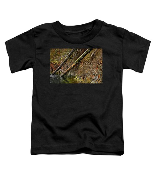 Fallen Friends 2 Toddler T-Shirt