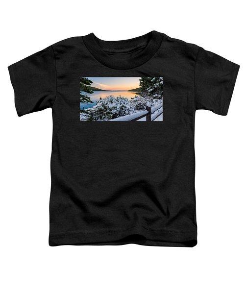 Fallen Leaf Lake Toddler T-Shirt