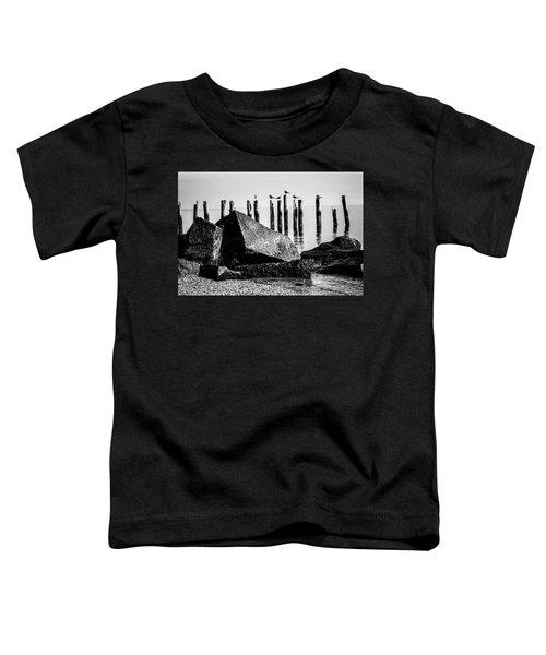 Falmouth Highlands Toddler T-Shirt