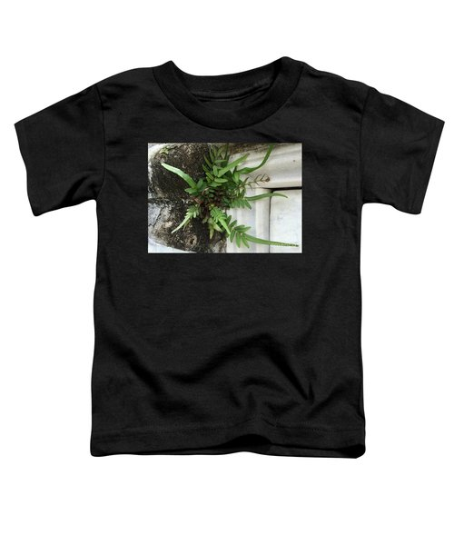 Fern Toddler T-Shirt