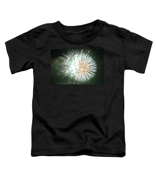 Fireworks In The Park 4 Toddler T-Shirt