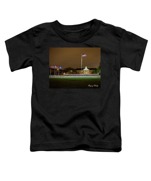 Flag At Night In Wind Toddler T-Shirt