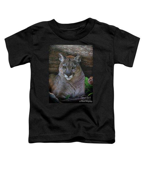 Florida Panther Toddler T-Shirt