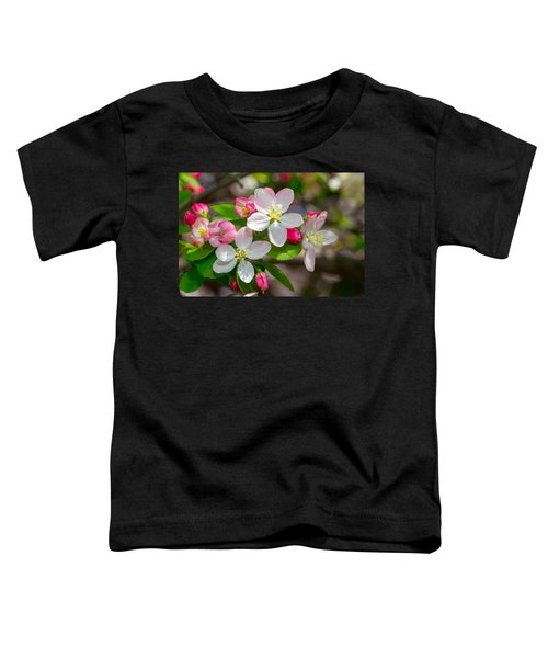 Flowering Cherry Tree Blossoms Toddler T-Shirt