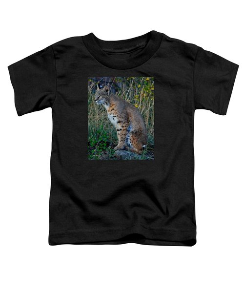 Focused On The Hunt 2 Toddler T-Shirt