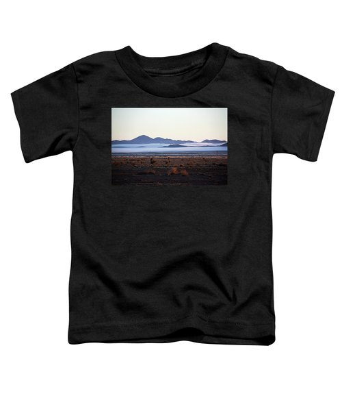 Fog In The Peloncillo Mountains Toddler T-Shirt