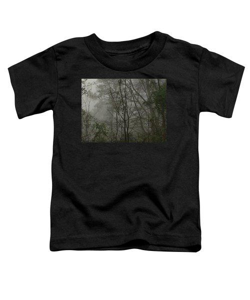 Foggy Woods Photo  Toddler T-Shirt