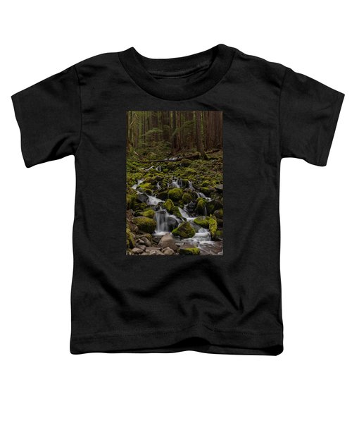 Forest Cathederal Toddler T-Shirt