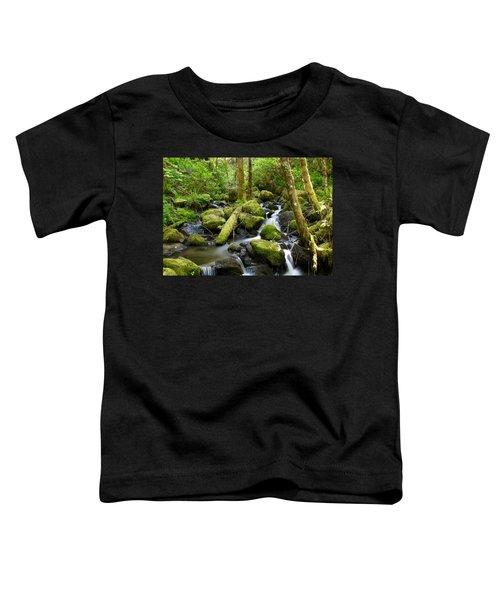 Forest Creek Toddler T-Shirt