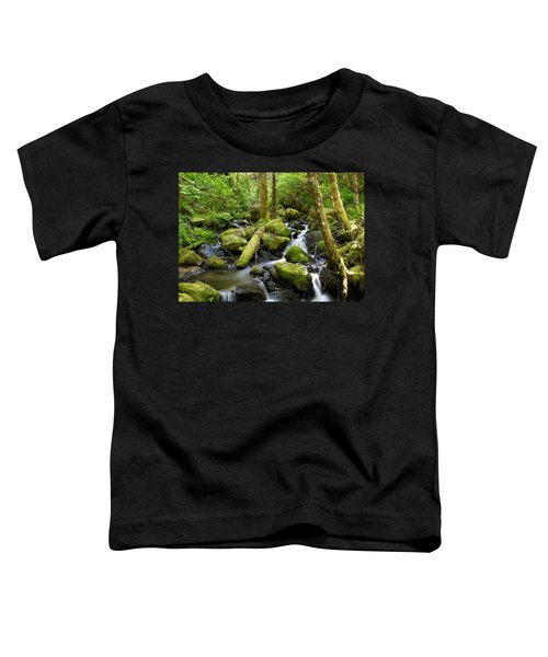 Forest Creek Toddler T-Shirt