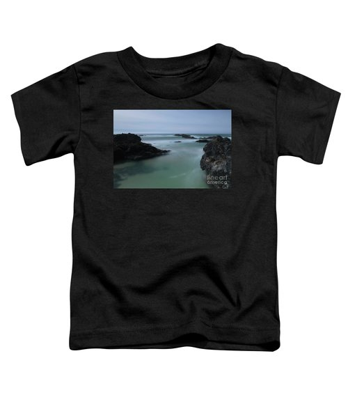 From The Top Of A Rock Toddler T-Shirt