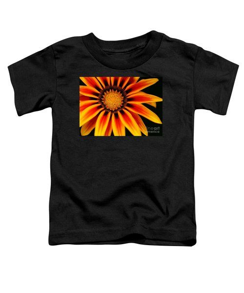 Gazania L Toddler T-Shirt