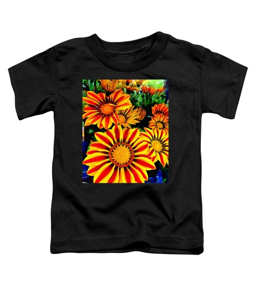 Gazania Splendour Toddler T-Shirt
