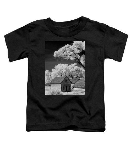 Ghost Town Bannack, Mt  Toddler T-Shirt
