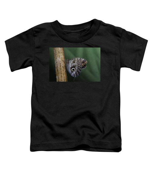 Giant Owl Butterfly On Screw Pine Toddler T-Shirt