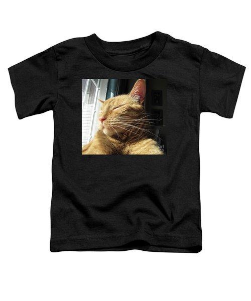Ginger Tabby Toddler T-Shirt