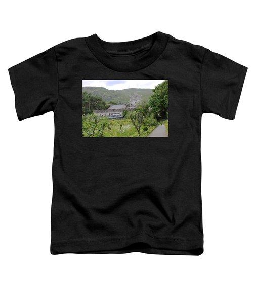Glenveagh Castle Gardens 4287 Toddler T-Shirt