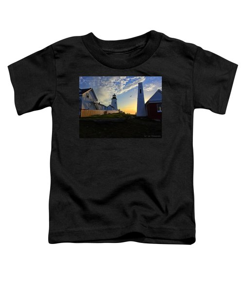 Glow Of Morning Toddler T-Shirt