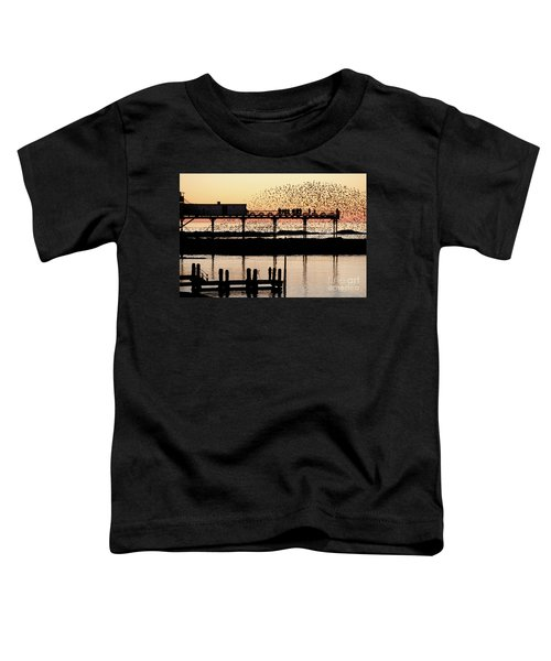 Golden Hour Starlings In Aberystwyth Toddler T-Shirt