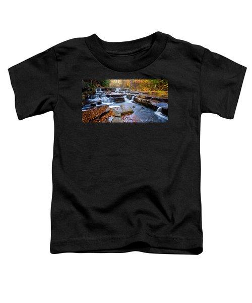 Gossamer Color  Toddler T-Shirt