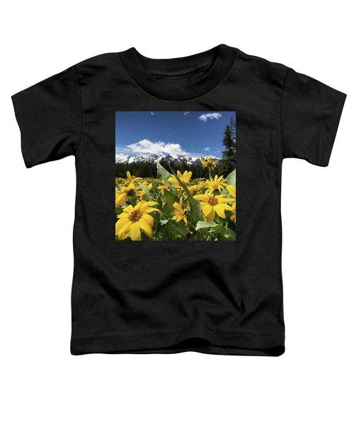Grand Teton Mountains Toddler T-Shirt