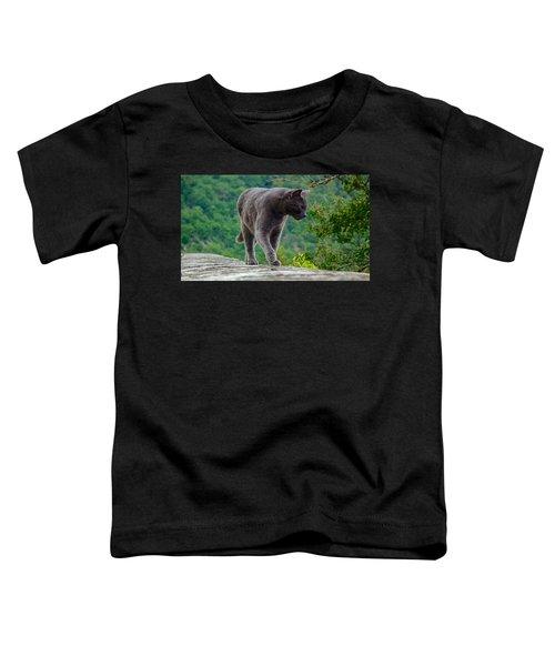 Gray Cat Stalking Toddler T-Shirt