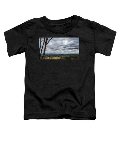 Grey Skies Toddler T-Shirt
