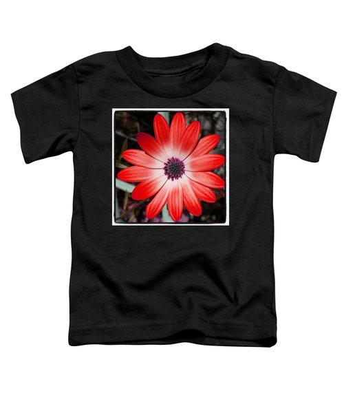 Toddler T-Shirt featuring the photograph Happy Birthday Carl by Mr Photojimsf