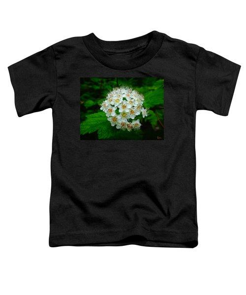 Hawthorn Hearts Toddler T-Shirt
