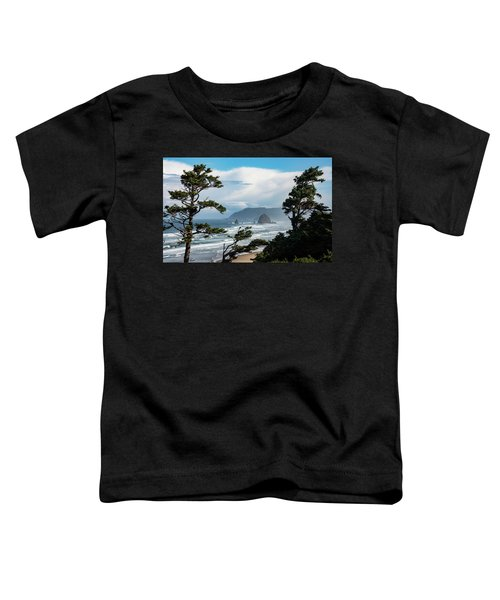 Haystack Views Toddler T-Shirt