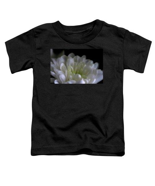 Hidden Heart Toddler T-Shirt