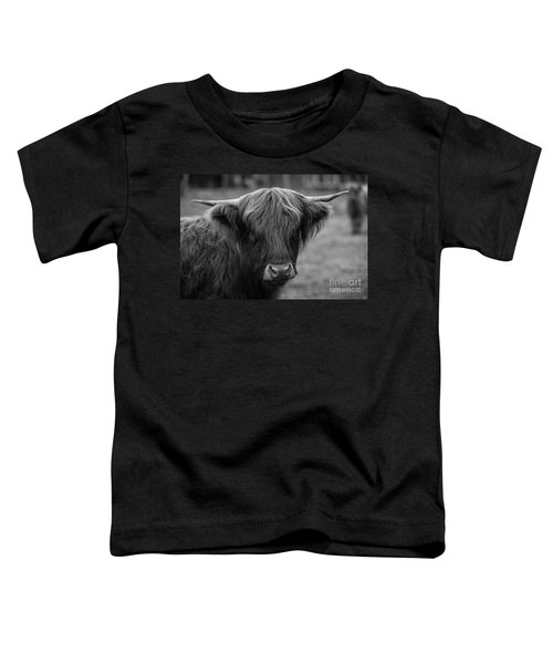 Highland Cow, 2015 - Farm Animal In Black And White Toddler T-Shirt