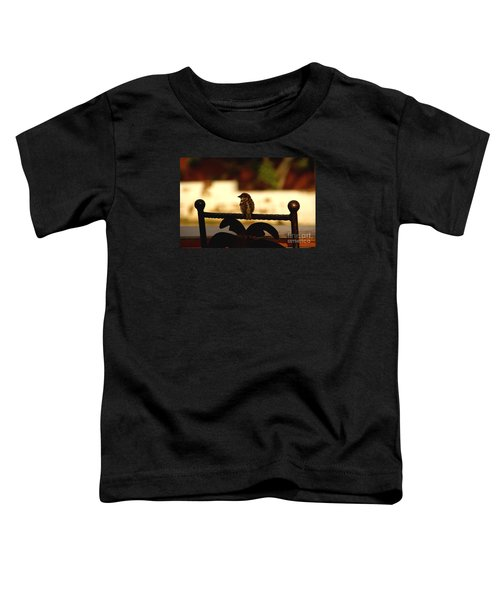 His Eye Is On The Sparrow Toddler T-Shirt