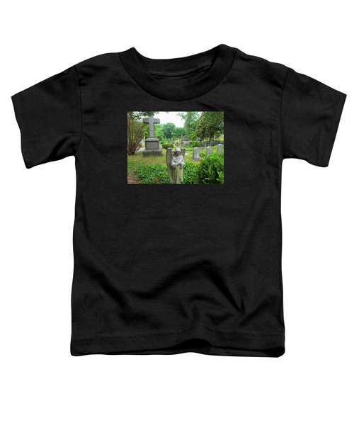 Hollywood Cemetery Toddler T-Shirt