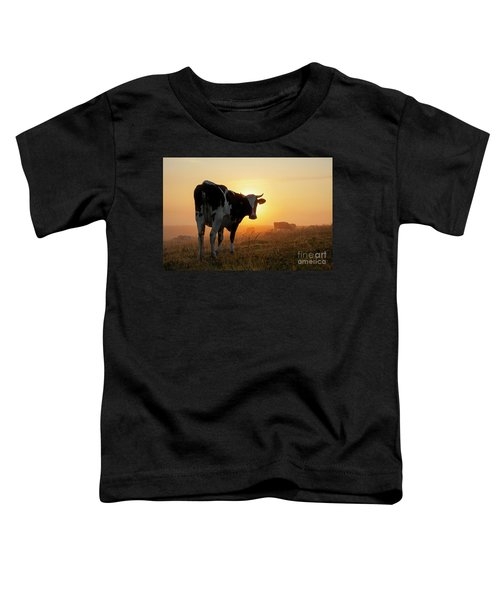 Holstein Friesian Cow Toddler T-Shirt