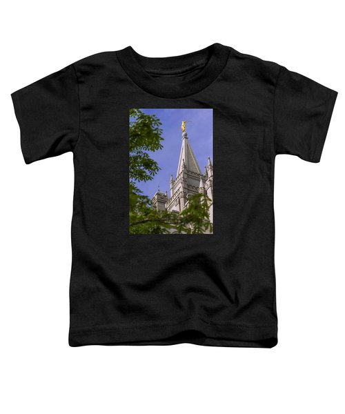 Holy Temple Toddler T-Shirt