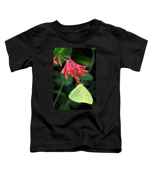 Honeysuckle Delight Toddler T-Shirt