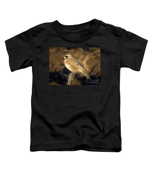 Horned Lark Toddler T-Shirt