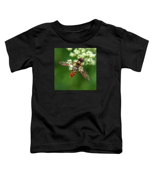Hover Fly Toddler T-Shirt