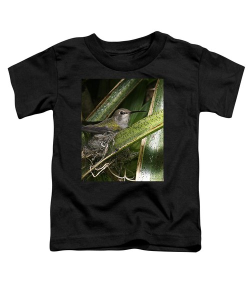 Nesting Anna's Hummingbird Toddler T-Shirt