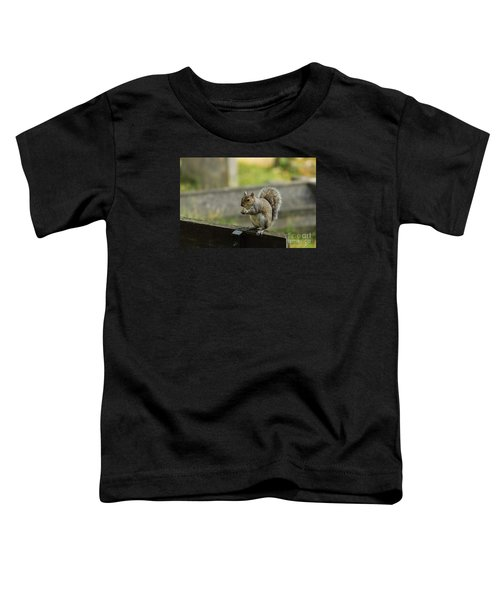 Hungry Squirrel Toddler T-Shirt